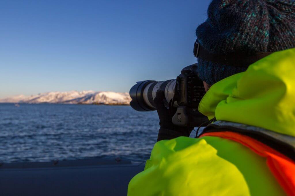 Zeearenden fotograferen