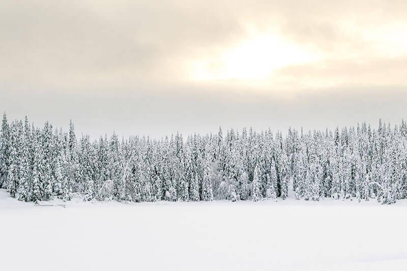 Lapland sneeuwscooter