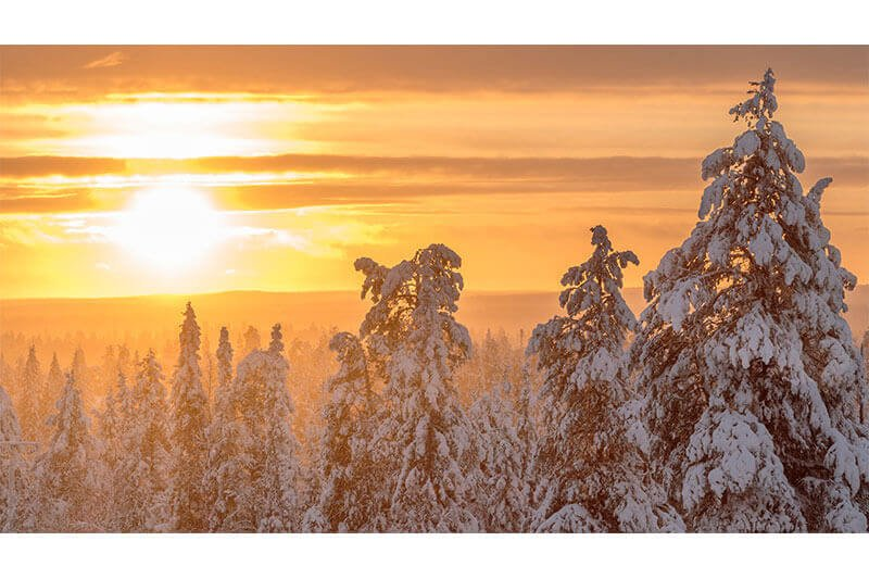 Sneeuwscootersafari Lapland