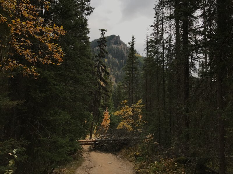 Johnston Canyon Hike