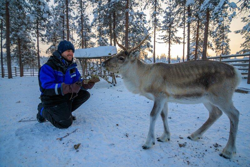 Salla Reindeer Park