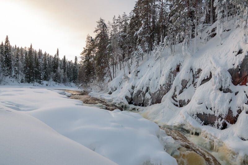 Sneeuwschoenwandeling in Oulanka National Park