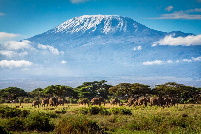 Doel 2019: beklimmen van de Kilimanjaro