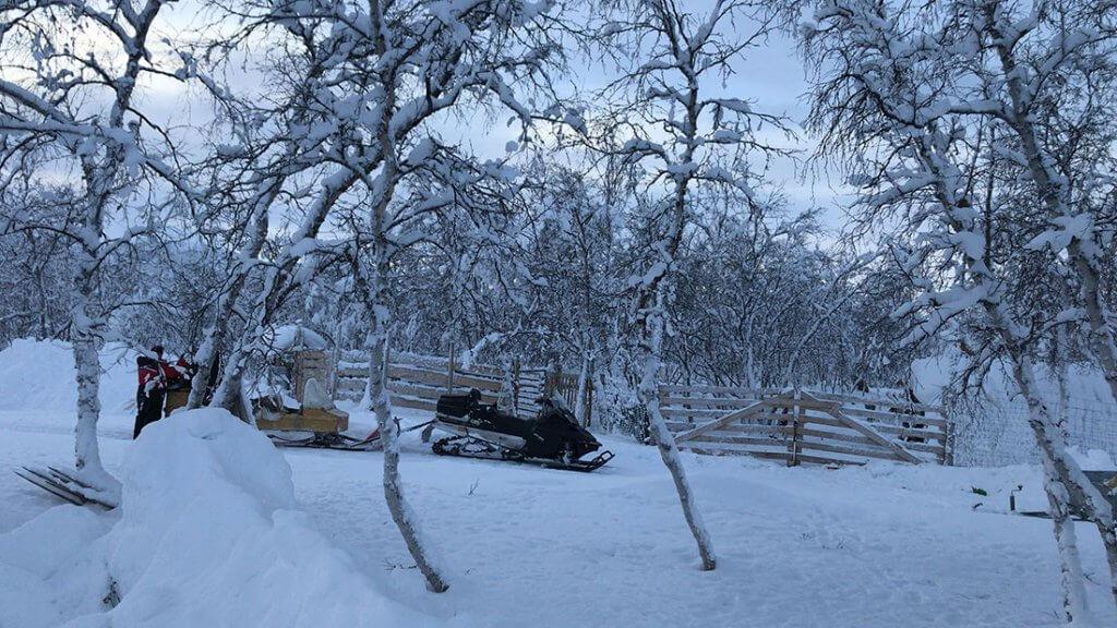 Rendieren boerderij Kilpisjärvi