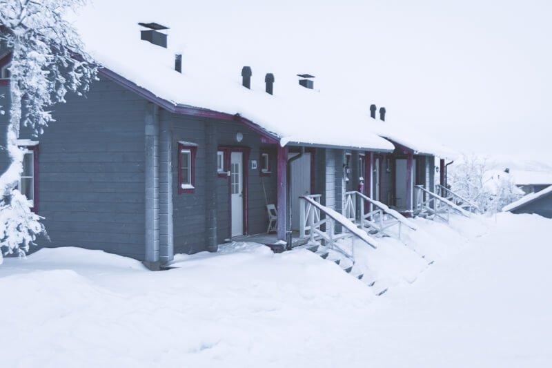 Arctic Polar