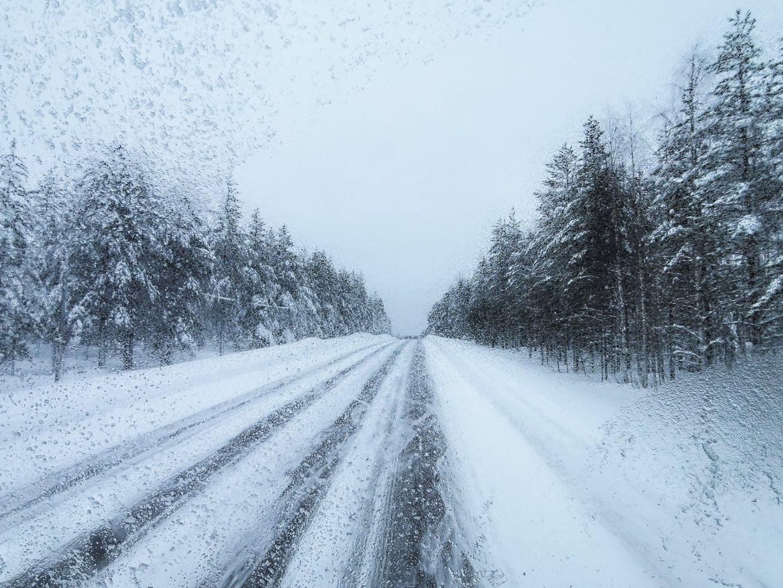 Van Rovaniemi naar Luosto