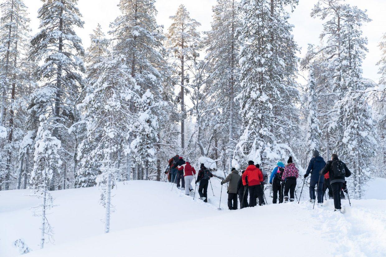 Sneeuwschoenwandeling door National Park Pyhä-Luosto