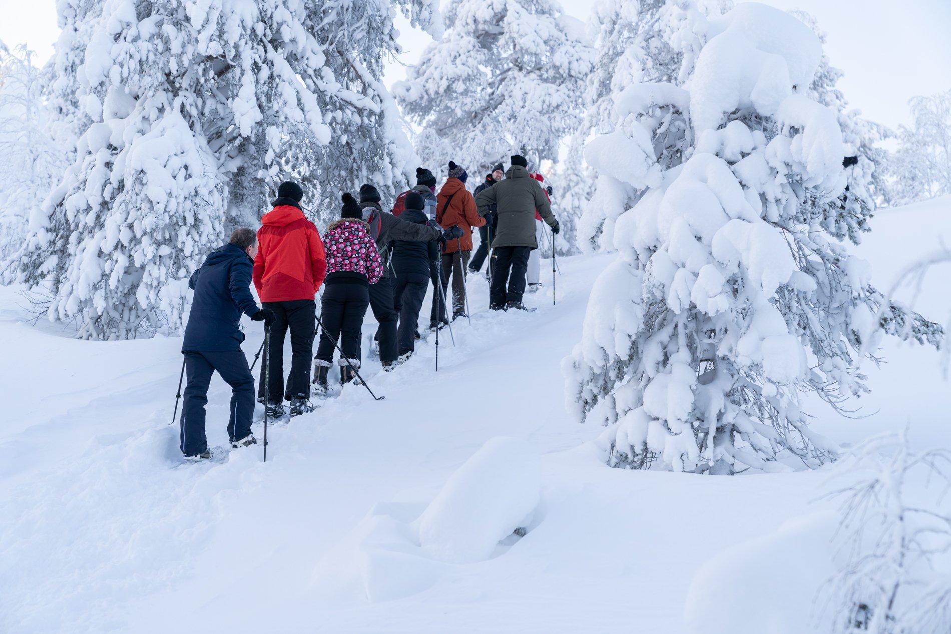 Noorderlichtreis Winterwonderland Luosto