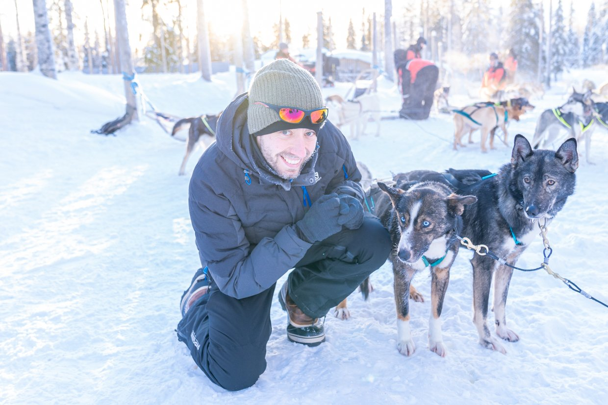 Huskytocht in Lapland, puppies en noorderlicht